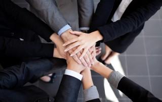 הדרכה ותוכניות לפיתוח מנהלים בכירים והנהלות