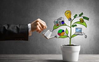 כיצד לבחור תוכנית מנהלים