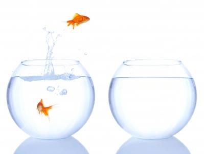 להפוך למקצוענים - סדנאות קורסים ואימון מערכי שירות לקוחות ומכירות