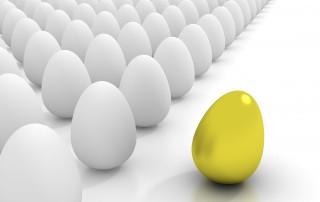 צאו מהתבנית! צרו תרבות שירות לקוחות מנצחת בארגון - המלצות לשיפור ואימוץ