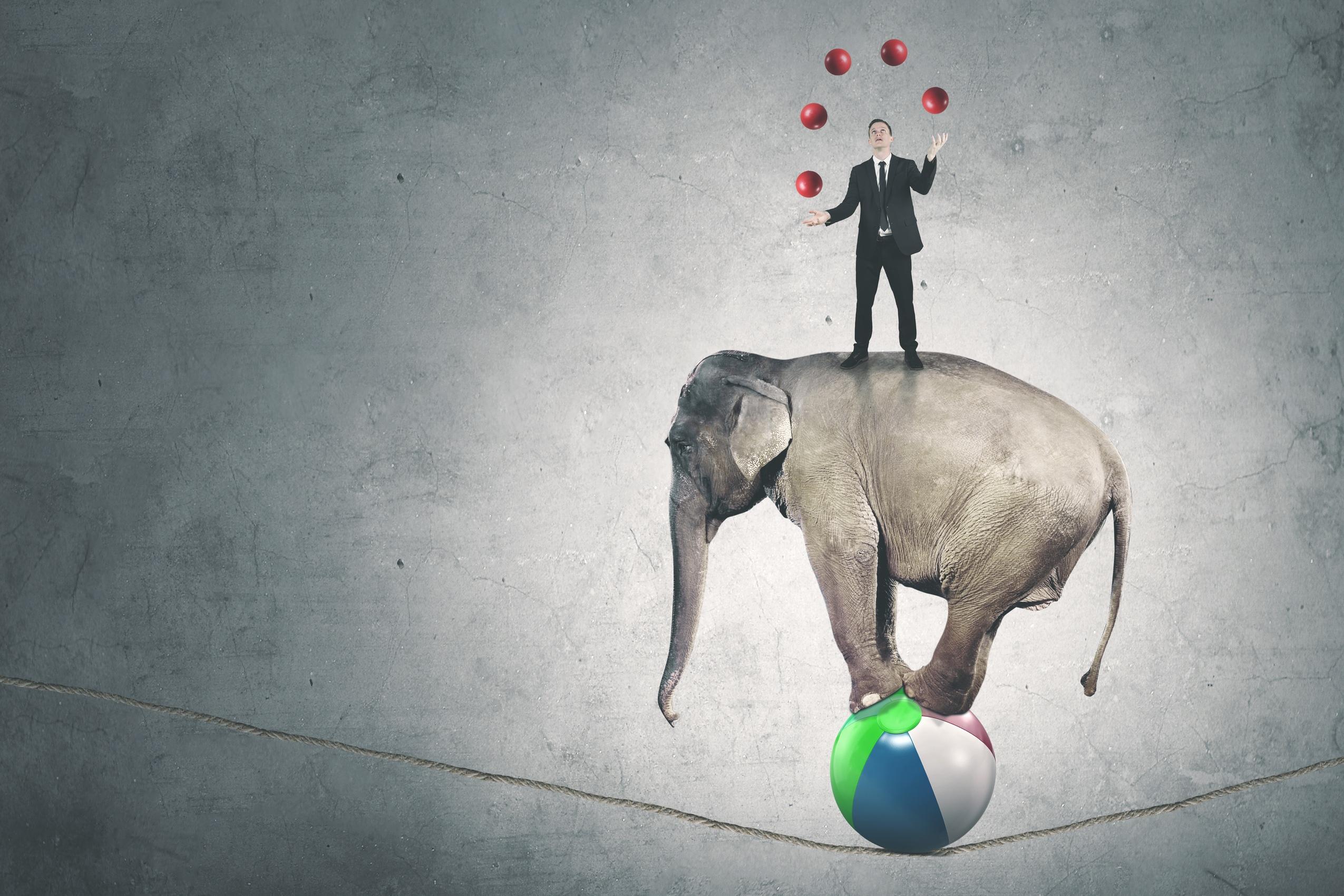 יועץ עסקי - ייעוץ עסקי וארגוני מודעות ניהולית למיקוד ולאסטרטגיה