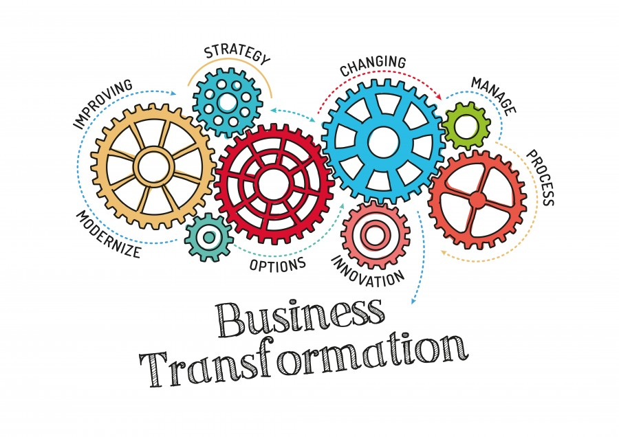 Find Business and organization Consultant that suits your needs.