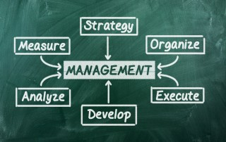 Organizational Consulting | Business Development and Strategies | Effective management