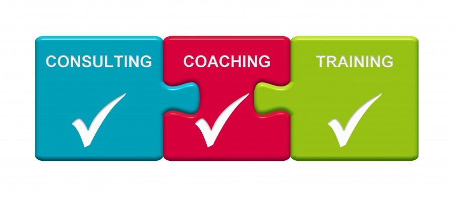 Team Management and Business Leadership Workshop